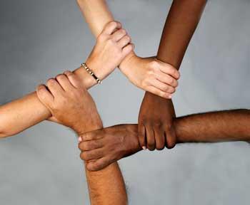 مدیریت تنوع